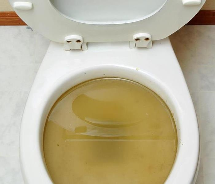 a toilet full of contaminated water