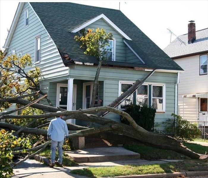 Storm Damage The Best Storm Shutters To Safeguard Your Home