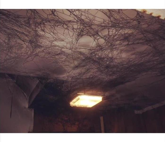 Puffback. Soot webs on ceiling