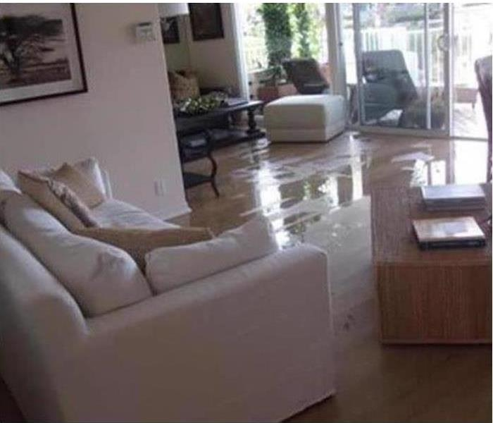 Water on a living room